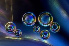 17. Pęcherzyki powietrza w krystalizującym miodzie / Air bubbles in crystalizing honey